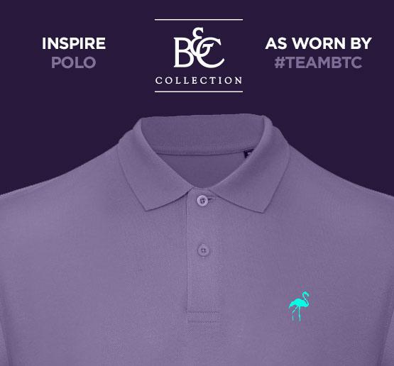 B&C Inspire Polo