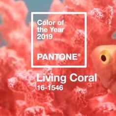 Pantone2019