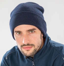 View Result Recycled Thinsulate Beanie